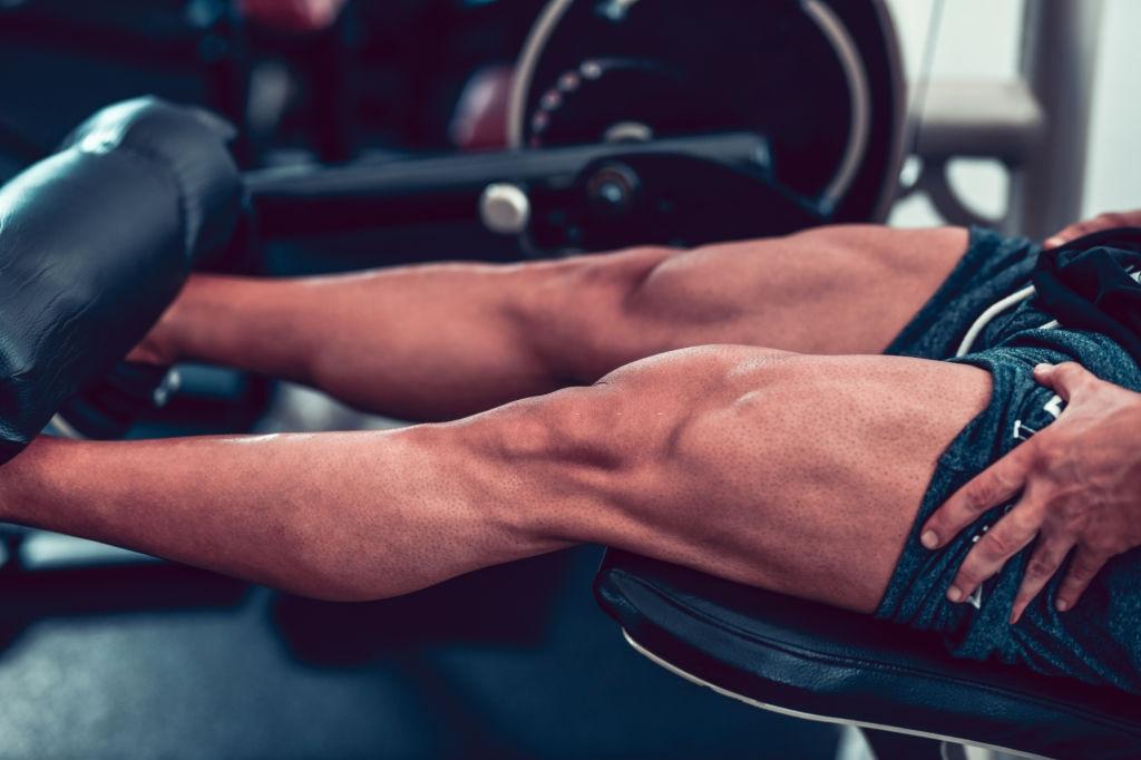 Bodybuilding Training Principles For Creating Quadriceps Routines