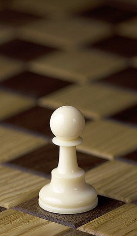 the pawn chess piece for chess beginners