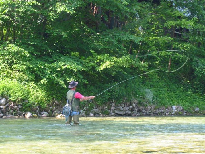 Fishing Guide – Tips for Beginners