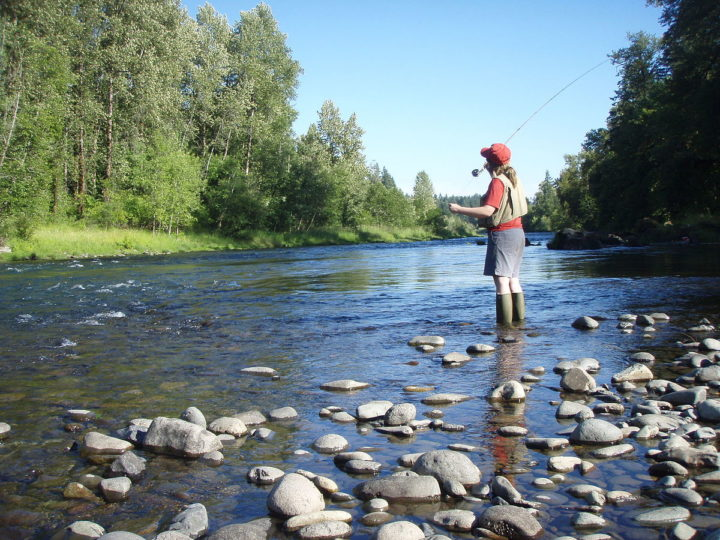Fly Fishing For beginners- Set-up And Basics of Fly Fishing