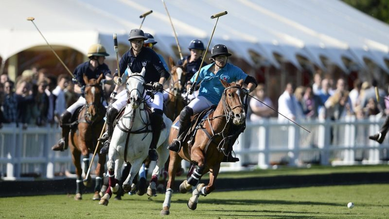 Polo: History, Rules, Penalties And More