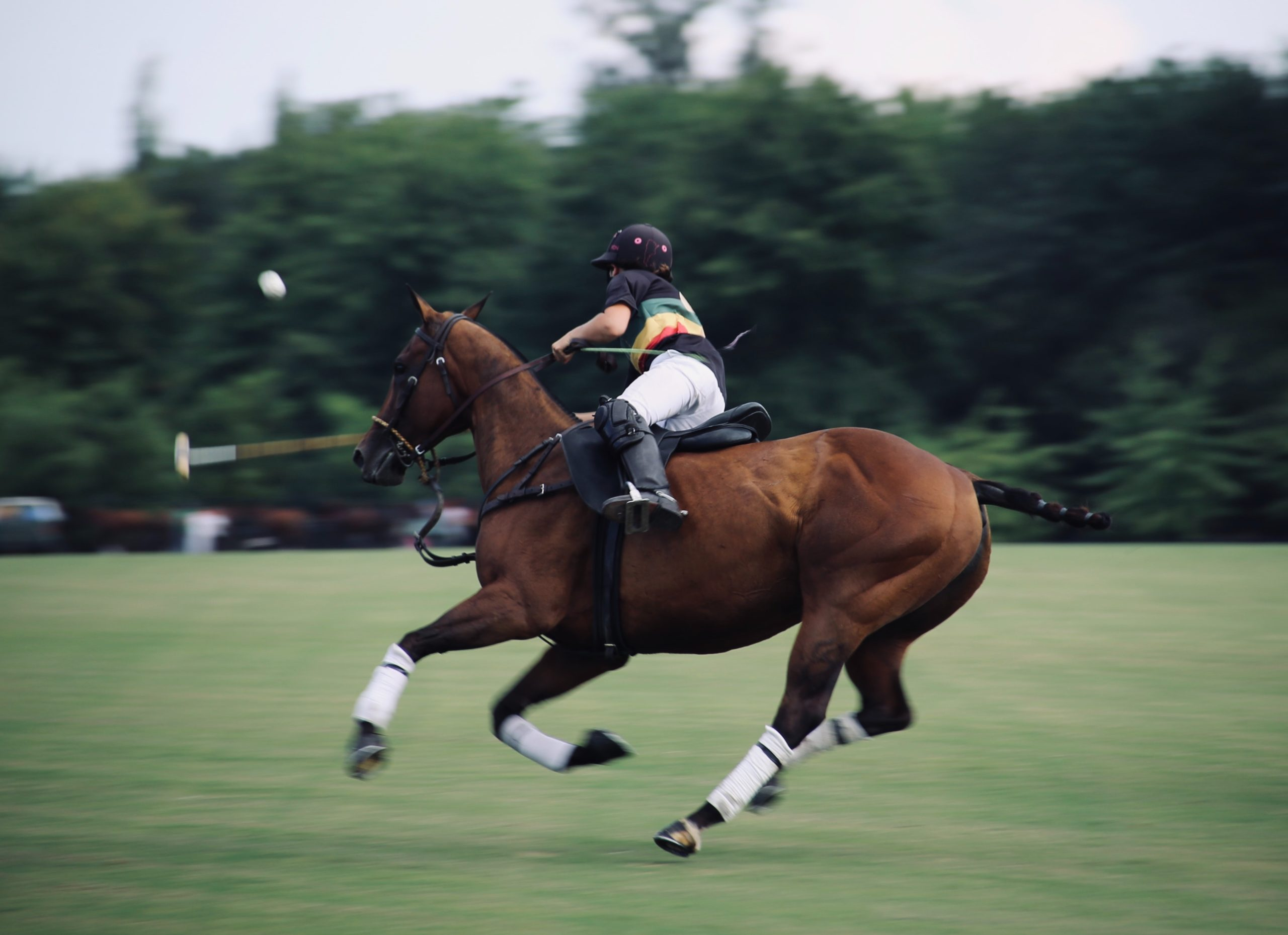 How to Play Polo Efficiently?