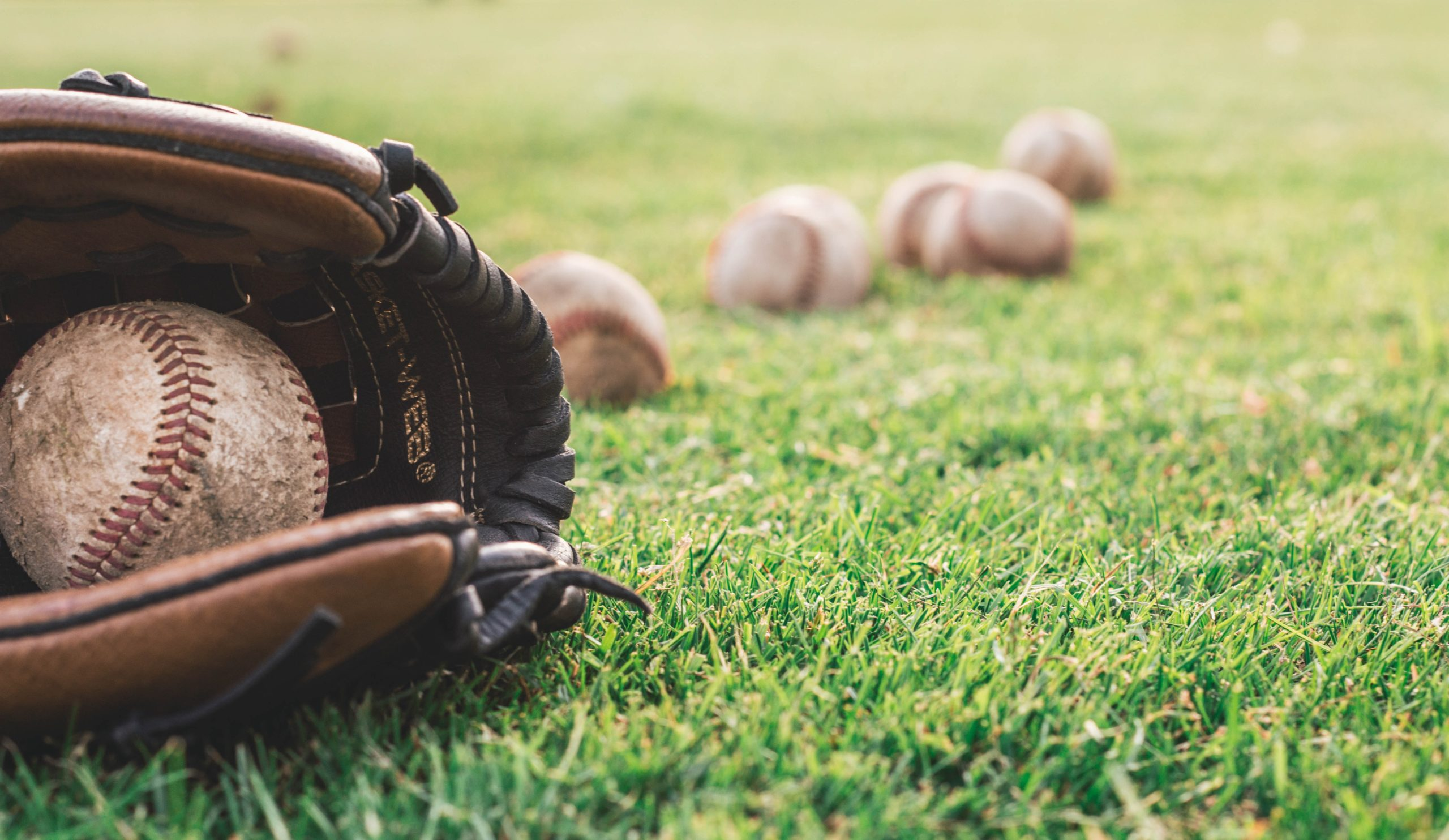 Best Baseball Gloves To Buy This Year